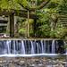 Sacred Stream near the Shrine by akirat2011