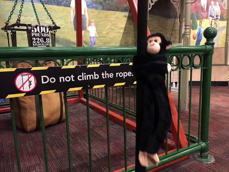 Naughty monkey!