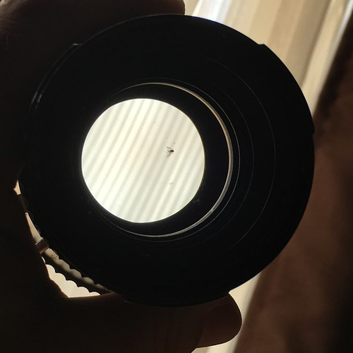 Help please! My lens eBay purchase came equipped with a dead bug between front elements. How do I get it out? Haven't gotten test roll back from development so I'm not sure how much it affects image.