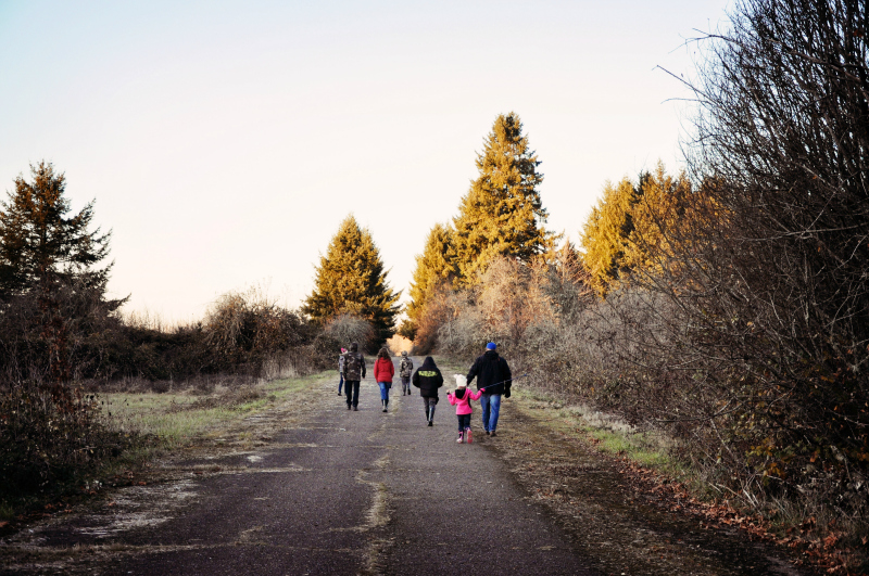 Walk @ Mt. Hope Chronicles