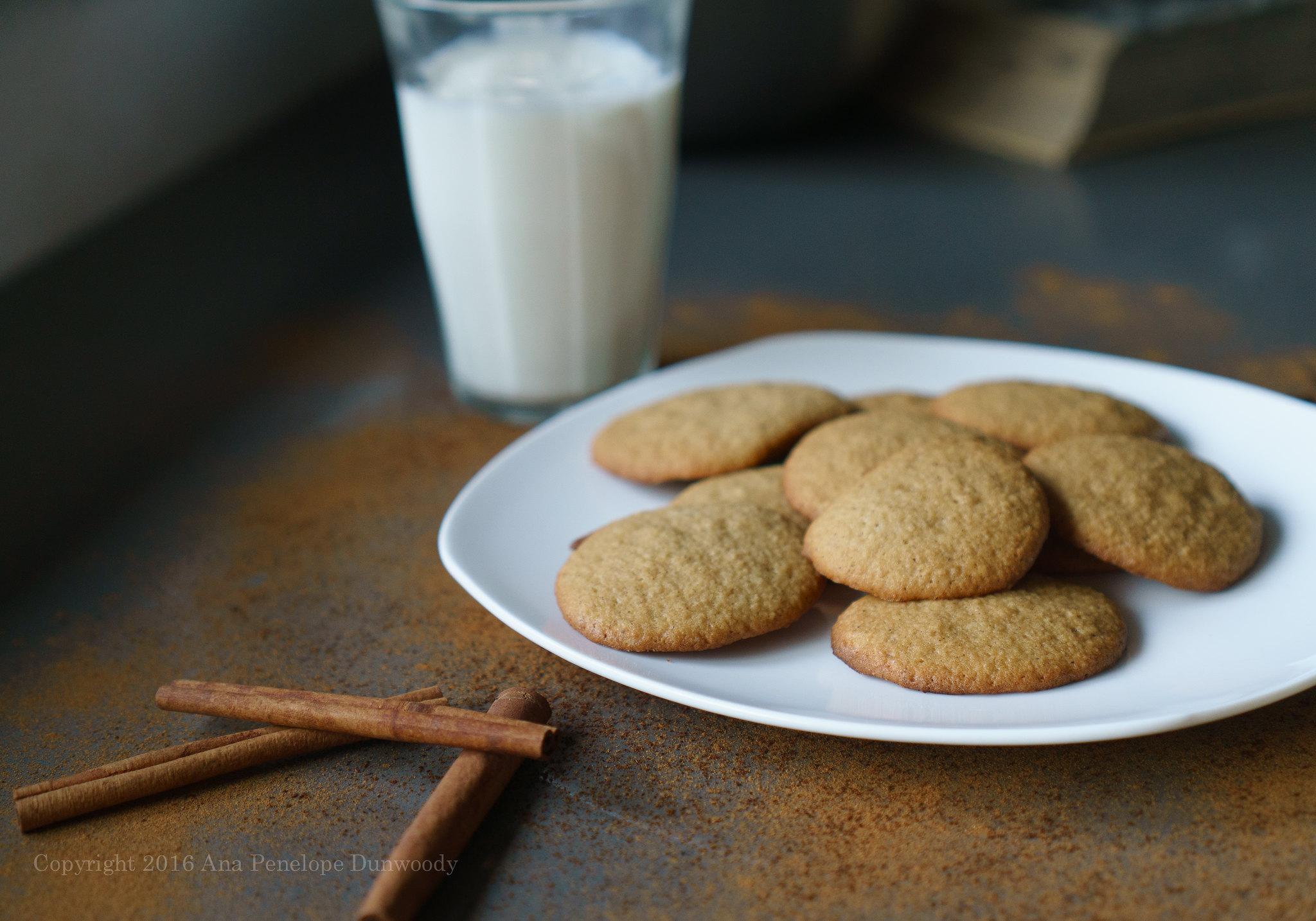 Applesauce Spice Cookies #3
