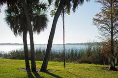 Dell Holmes Park St. Petersburg Florida