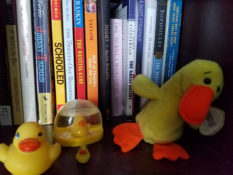 Duck shelf