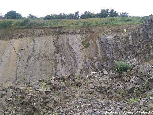 Rock Unit Group: Silurian Metasediments and Volcanics