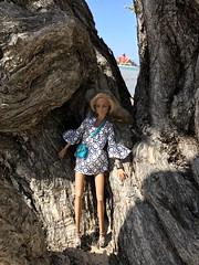 Stymied on the beach #fashionroyalty #dolls #ayumi #jamaica #mobay #integritydolls