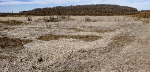 Goose Lake Drumlins State Natural Area