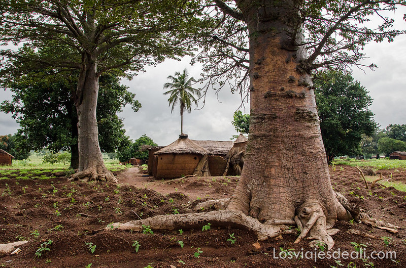 tribus de Benin País Somba