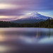 Trillium Blue Minute by RobertCross1 (off and on)