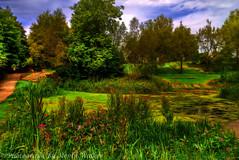 Daisy Nook Park, Lancashire