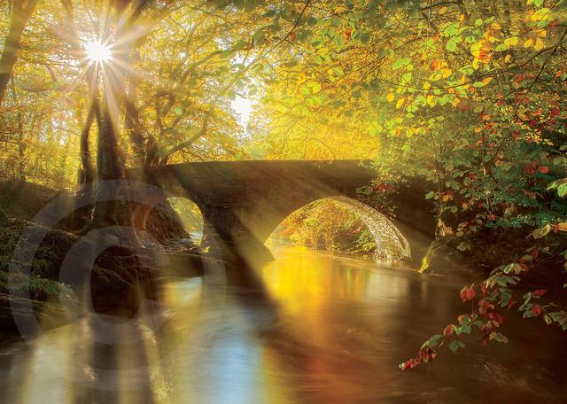 November, TwoGiantScoops, Morning Light, DenhamBridge