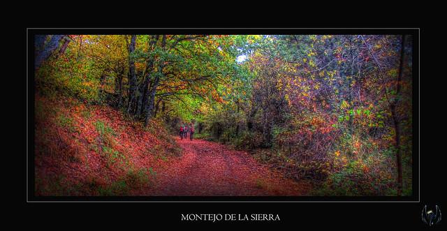 2015_10_18_Hayedo_Montejo_007