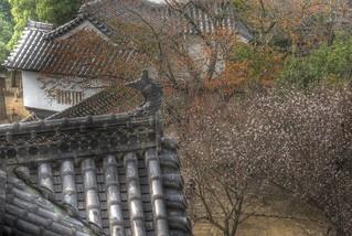 Himeji Castle-vol.1 on OCT 22, 2015 (2)