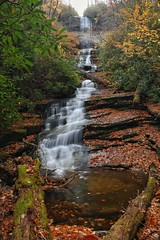 Dismal Falls on a beautifully dismal autumn day!