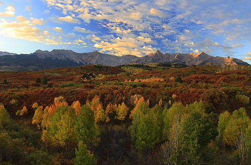 fall colors leaves sunrise dawn golden san colorado juan parkway aspen ridgway