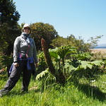 Di, 03.11.15 - 13:17 - Parque Nacional Chiloe