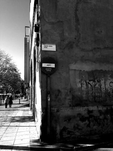 carrer de la vida
