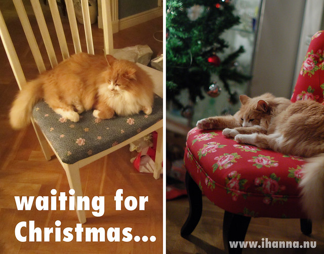 Waiting for Christmas... by iHanna in Sweden, visit www.ihanna.nu