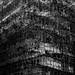 scaffolding by Wilson Au | 一期一会