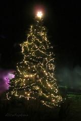 Merry Christmas ~ Frohe Weihnachten