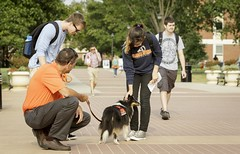 National Dog Day at Oklahoma State University with Pete's Pet Posse