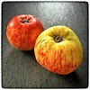 #Apples from #Wrangletown They make them into hard cider. (I grated one into my cereal this morning.)