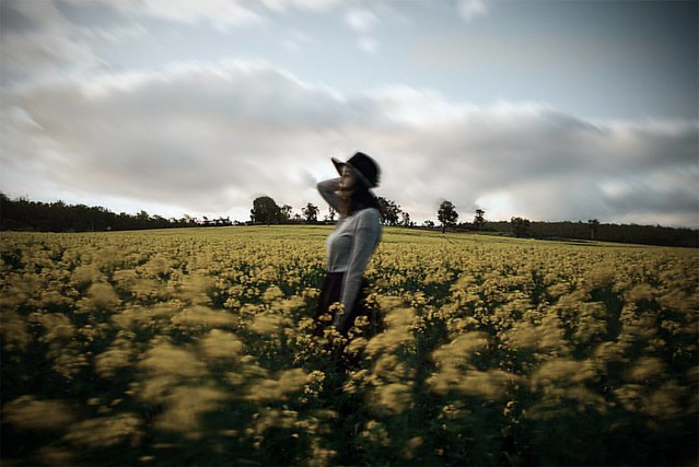 On one of our trips to the canola fields, lindsy said