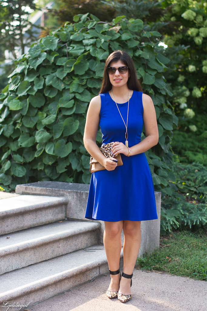 cobalt dress, leopard pumps and clutch.jpg