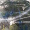 Sunlit scrawl