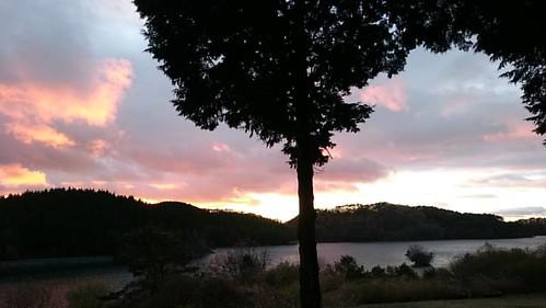 今日の夕焼けは綺麗でした(^^)