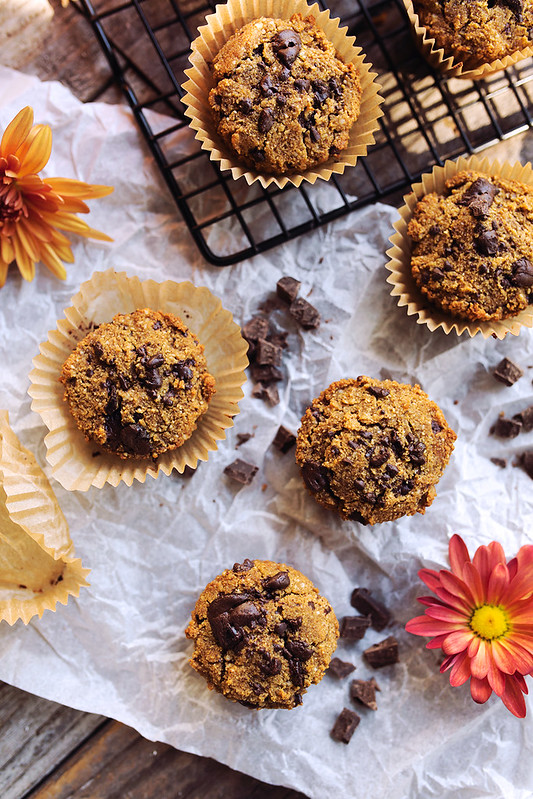 Grain-Free Pumpkin Chocolate Chunk Muffins - Tasty Yummies