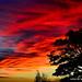 SCARY SKY 2 by saqqara1