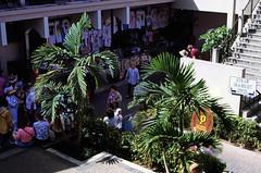 Bahamas 1988 (178) New Providence: Straw Market, Nassau