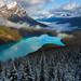 Snowline by Adrian Klein