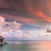 Livin' on an Island by Jerry Fryer