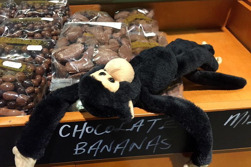 Monkey has found heaven!