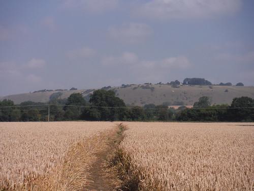 Huish Hill