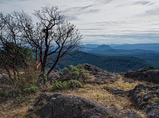 Saanich Highlands
