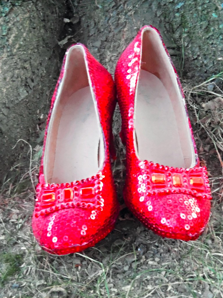 098963f2139a ... DorothyGaleLovesMe Close-Up of Ruby Slippers Under A Tree