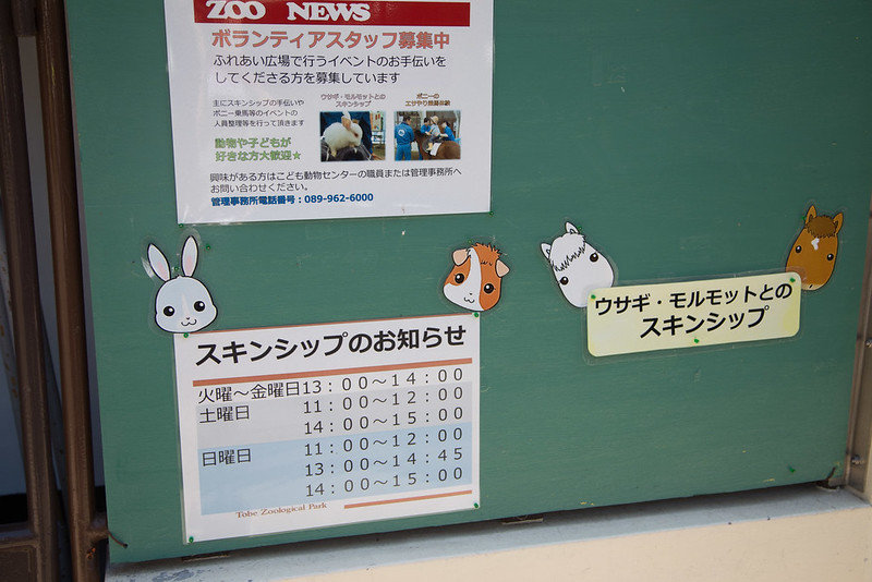 tobe_zoo-8