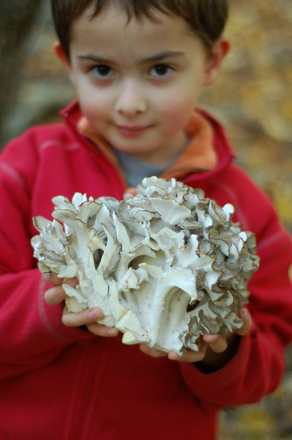 Will with his find - a gigantic hen of the woods mushroom by Eve Fox, The Garden of Eating, copyright 2015