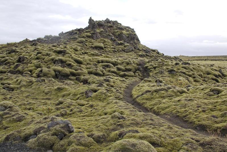 Laki lava field