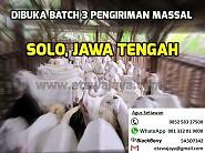 Dibuka Batch 3 Pengiriman Massal ke Solo, Jawa Tengah Oktober 2015 (Ditutup)