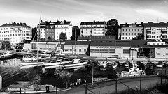 Djurgården in Stockholm, Sweden