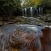 Big Run - Monongahela National Forest by randall sanger