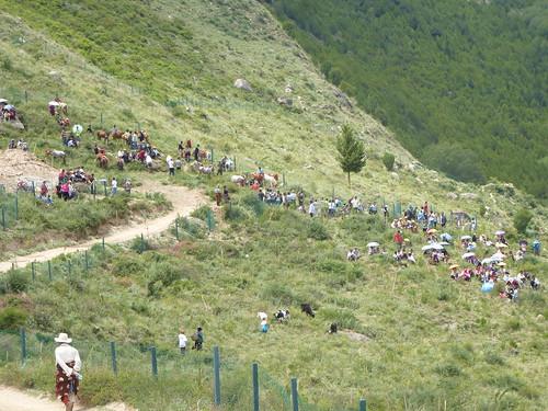 CH-Danba-Jiaju-Chevaux-Course (3)