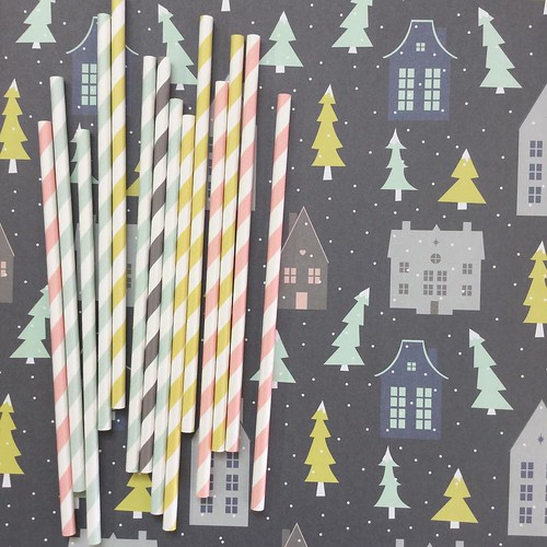 Revel & Co. Zinc House Wrapping Paper and Striped Paper Straws