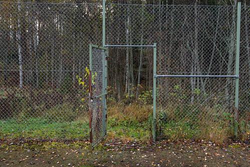 door tree nature metal forest fence suomi finland leaf chainlink trunk skrubu keuruu pni pekkanikrus hotellikeurusselkä