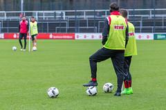 FC Köln: Training am 30.01.2017