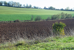 Rural France, Domain La Poujade, Caylus - Photo of Mouillac