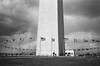 Washington Monument on a Gloomy/Windy Day by beltz6